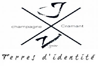 Champagne J. Vignier